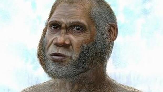 An artist's reconstruction of fossils from two caves in southwest China indicate a previously unknown species that survived until the end of the Ice Age, scientists say.