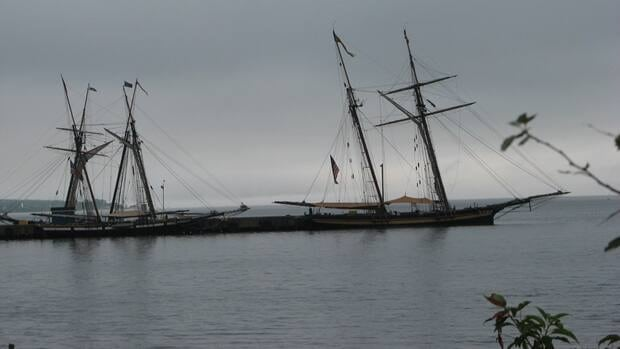 Two tall ships are seen through the trees at Shelburne's government wharf. Spectators were denied access to the ships after 5 p.m.