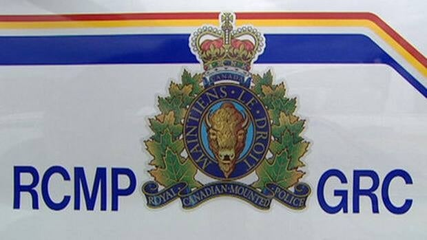 The RCMP's anti-corruption unit arrested Reza Therani, 55, on 13 counts including conspiracy, fraud and bribery.