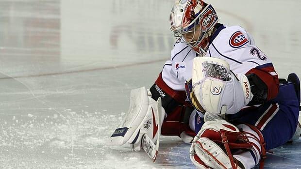 Hamilton Bulldogs goaltender Robert Mayer will share goaltending duties with Dustin Tokarski.