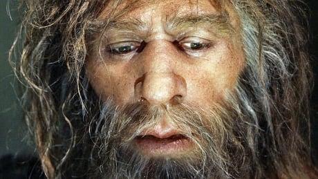 hi-neanderthal-852
