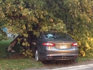 Car crashes into tree in Corner Brook Oct. 4 2013