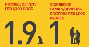 Pet stats 3