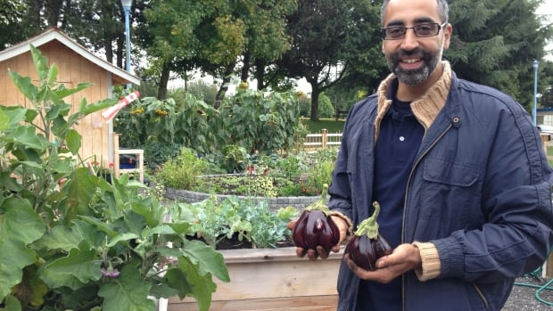 Bardia Khaledi in the Steveston Educational Garden.