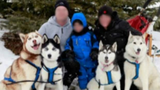 CBC News has learned that the family in Airdrie, Alta., whose baby was mauled to death by a family dog operates a Siberian husky dogsled business. CBC News has blurred their faces in this photo to respect their privacy.