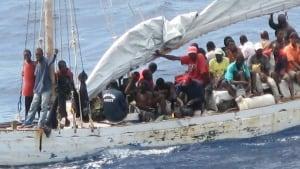 hi-migrants-857
