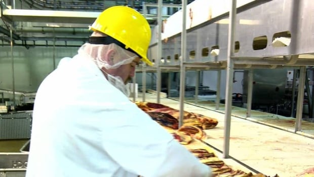 Atlantic Beef Products in P.E.I. is now certified to produce halal meat.