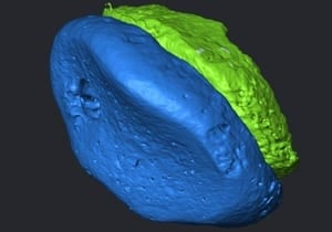 si-denisovan-scan
