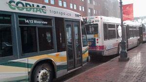 Codiac Transpo bus