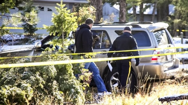 Joyrider Nickolas Bullock, 27, and a 17-year-old girl, who cannot be named, were both in the car when he led police on a wild car chase from Port Coquitlam, to Cranbrook.