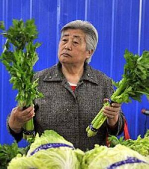 lettuce-250-rtr2m8ou