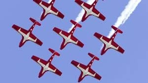 mi-snowbirds-dnd-file