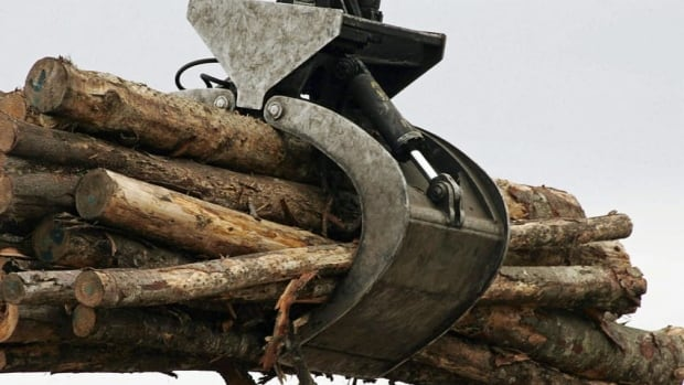 The province said there is a glut of wood on the market that will drop the forestry royalty revenues.