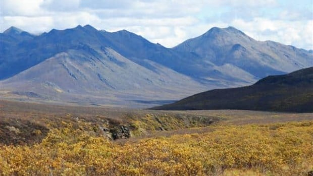 The NDP vow to move quickly on the Peel plan if its forms the next Yukon government.