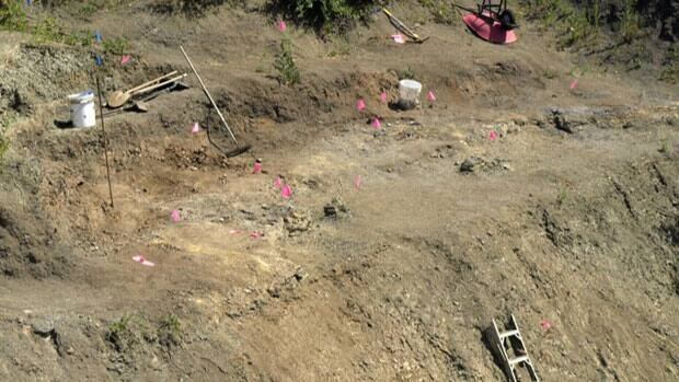 The dig site in southern Manitoba has uncovered mosasaurs, prehistoric squid and bird fossils, giving scientists new insight into what Western Canada looked like 80 million years ago.