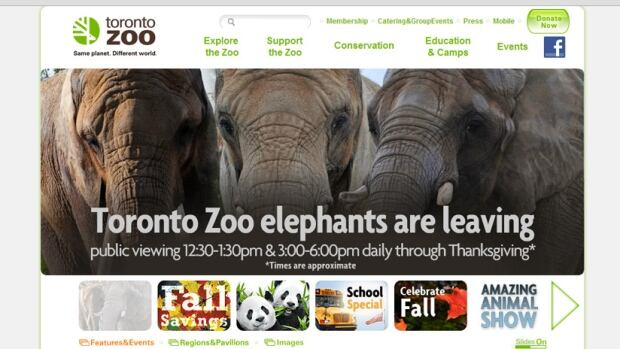 Ahead of this Thanksgiving, the Toronto Zoo is running a promo on its website, advising the public that its three elephants, Thika, Toka and Iringa, will soon be gone.