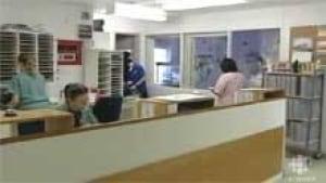 north-hospital-nurses-file