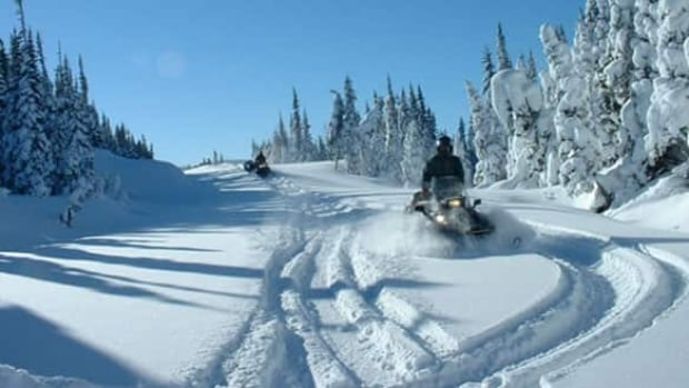 One snowmobiler was injured, the other went for help.