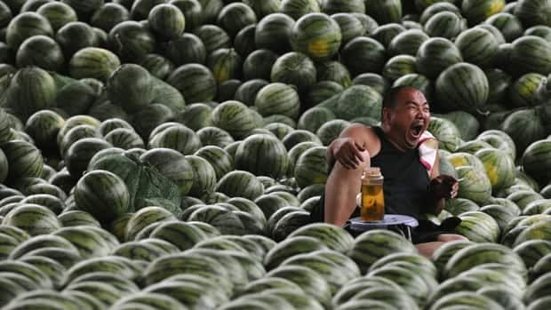 State television is reporting that farmers in eastern China are losing their watermelon crop due to overdoses of growth chemicals.