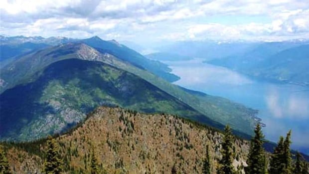 The Pacific Carbon Trust's deal to pay the Nature Conservancy of Canada's $4 million for carbon credits for it's 55,000-hectare Darkwoods forest in southeastern B.C. was one of the more controversial deals made by the agency.