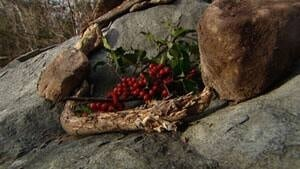 mi-ns-cline-wreath