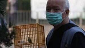 in-220-bird-flu-cp-9773818