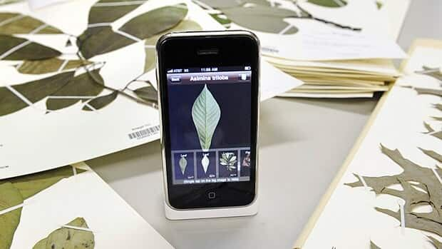 The app provides access some of the science based on the nearly five million specimens kept by the U.S. National Herbarium at the Smithsonian's National Museum of Natural History. The collection began in 1848 and is among the world's 10 largest plant collections.