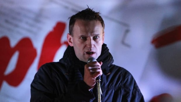 Russian opposition leader Alexei Navalny was convicted in July of organizing the theft of $515,000 worth of timber in 2009.