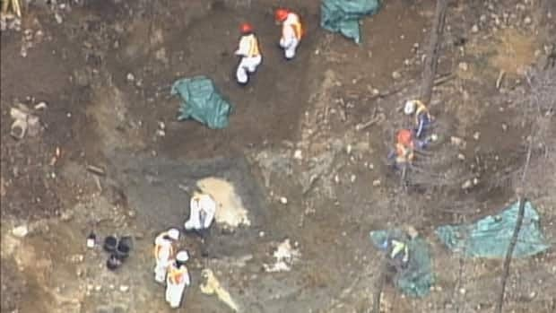 Workers are seen in this aerial view digging up a mass grave of sled dogs near Whistler, B.C.