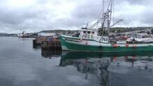 tp-nl-shrimp-boats-2009file1