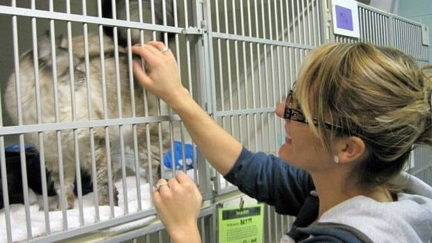 Jade Dittaro, a medical student in Thunder Bay, wants to volunteer at the Thunder Bay and District Humane Society. However, her planned orientation was cancelled because of the organization's funding crisis.