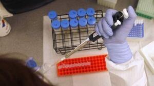 hi-lab-test-852-9818962