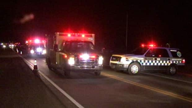 Emergency vehicles crowd Quebec Highway 148, about 40 kilometres northwest of Ottawa, after a fatal crash involving a black bear.