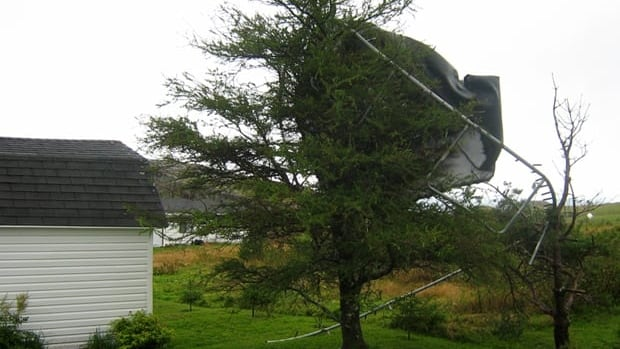 Hurricane Maria sent this trampoline soaring on Friday before it landed in a neighbour's tree in Upper Island Cove, N.L. Maria was downgraded to a post-tropical cyclone a few hours after it landed in Newfoundland.