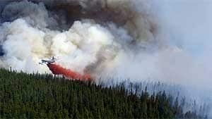 mi-bc-110822-forest-fire