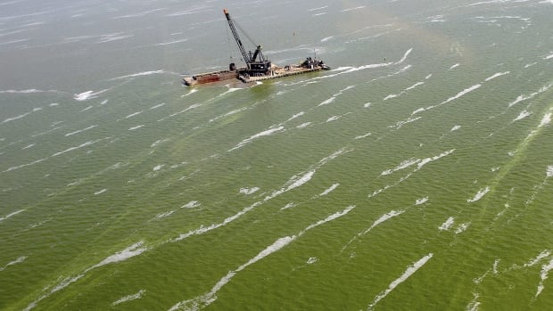 A dredge barge works along the edge of a large algae bloom in the Toledo shipping channel in Toledo, Ohio, in August 2013. Phosphorus run-off from agriculture is a threat to the lake's future.