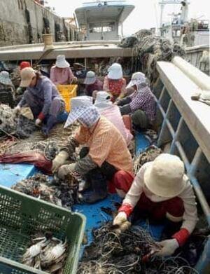 korea-crabfishers-cp1184336