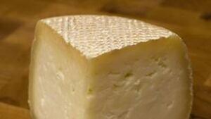 tp-cheese-cp-4453118