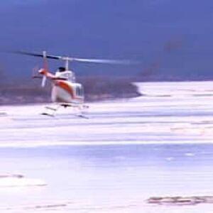 nl-chopper-search-20100520