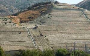 100921-fossil-trove-site-ap-9434500-320px