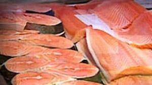 bc-090315-fish-salmon