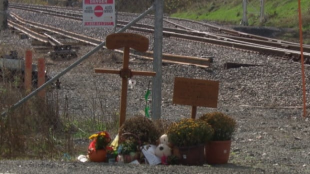 Two wooden crosses, pots of flowers and some weather-beaten pictures are part of a makeshift memorial near a level rail crossing where six people were killed in Ottawa's deadliest bus crash.
