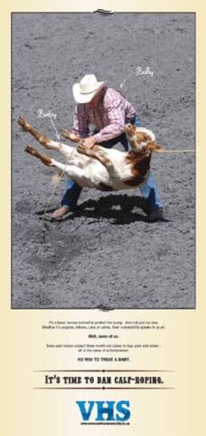 cgy-calf-roping-ad