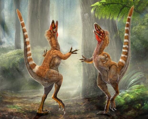 orange-dinosaur