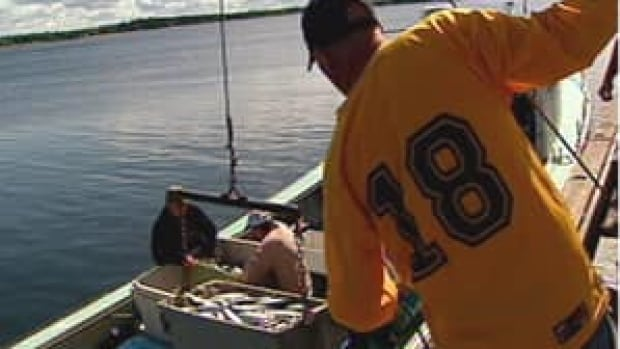 A 1999 Supreme Court of Canada decision allowed First Nations fishing rights, either by their own labour or using another party as a contractor.