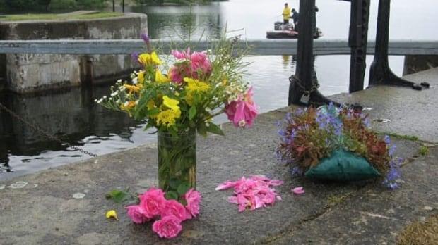 flowers-cp-w-6973277