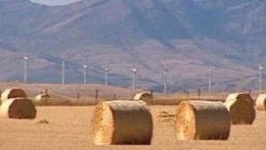 tp-cgy-wind-farm