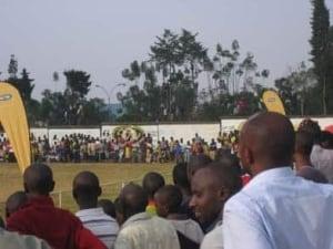 rwanda-trees-392