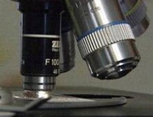 microscope-cbc