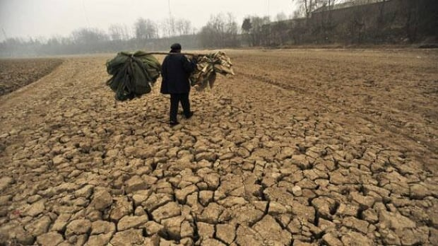 drought-china-cp-w-6244601